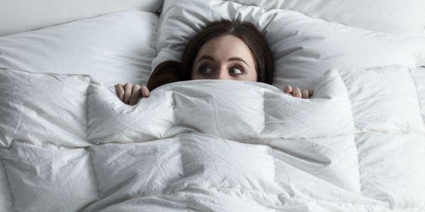 Bed Bugs Blog Header